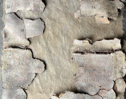 detail-fragment